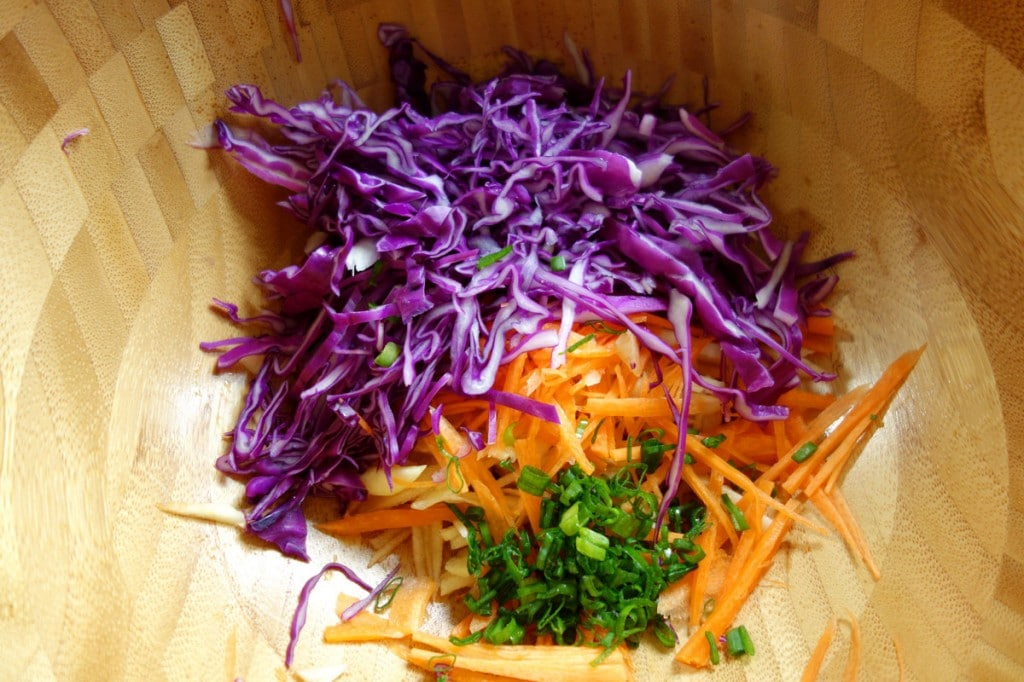 Red Cabbage Slaw Medley of colors
