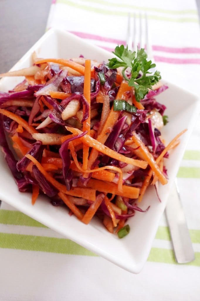 Red Cabbage Slaw with vinaigrette dressing