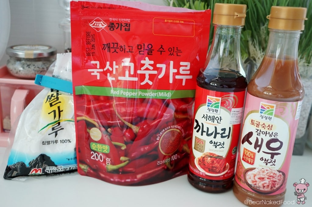 ingredients for making kimchi